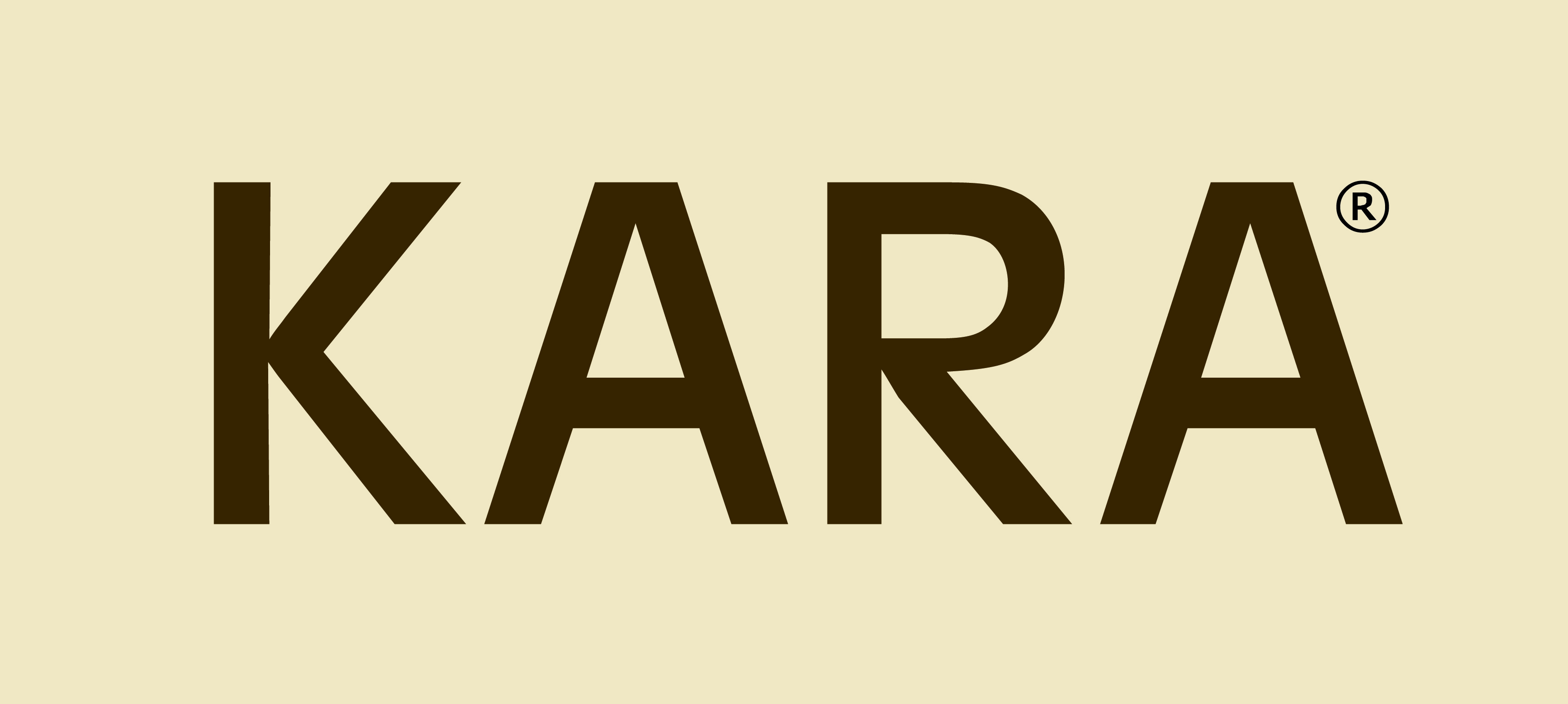 a2469171ac KARA ACCESSORIES